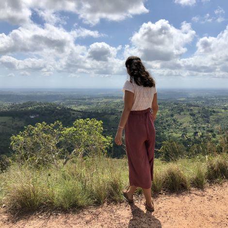 Blick über den Regenwald, weite Landschaft,grün
