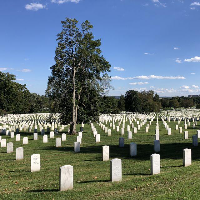 Ein Friedhof für gefallene Kriegssoldaten in den USA.