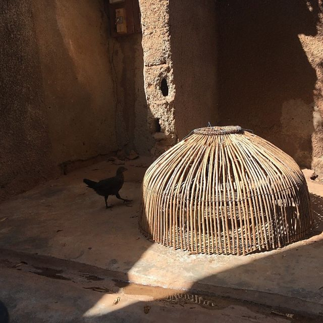Mein Huhn – wird es in den Kochtopf wandern???