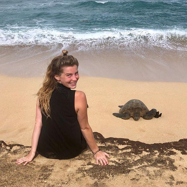 Found my spirit animal on Maui.🐢 •…
