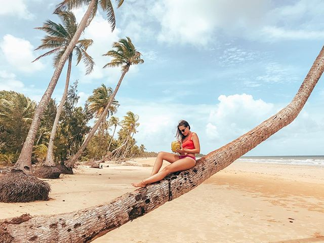 Just give me a coconut and I'm a happy kid 🧡🌴…