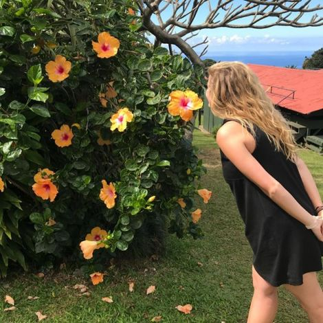 Hawaii's state flowers do smell as lovely as they look.🌼…