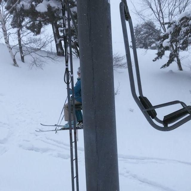 Hai-Alarm in #Nagano! Beim Skifahren verkleiden sich Japaner gerne - die…