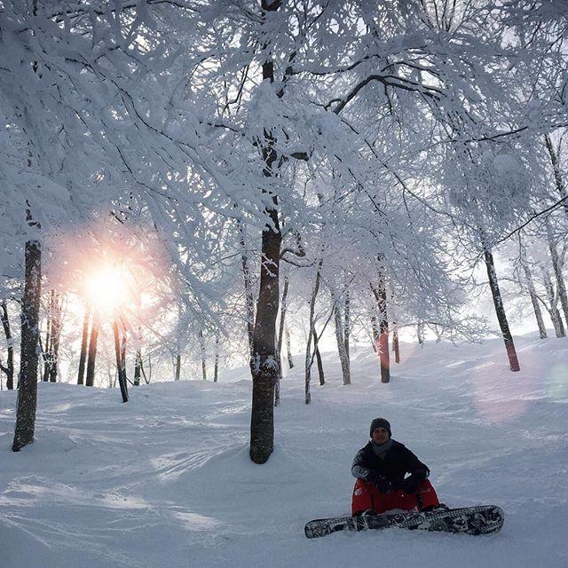 Japan ist ein Paradis für Wintersportler! Während es in Tokio während der…