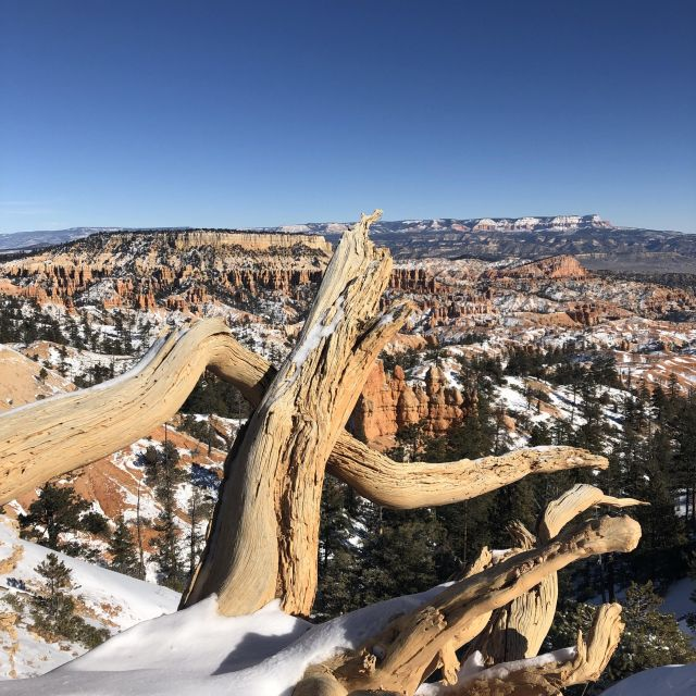 Schnee am Bryce Canyon