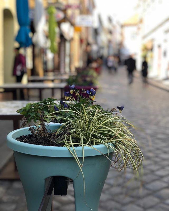 Zagreb- Kroatien 🇭🇷 Mit dem Flixbus  dauert es keine 2h und schon…
