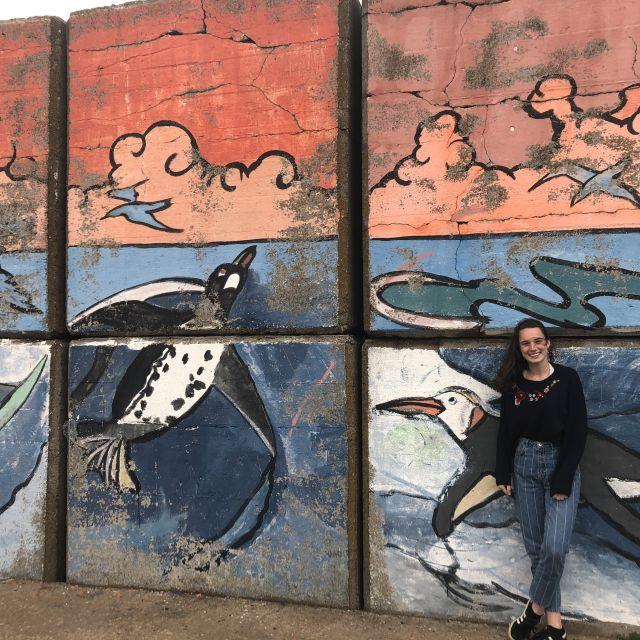 Streetart in Mar del Plata