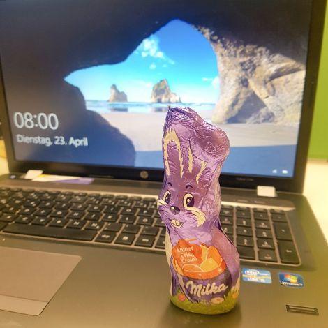 Der Osterhase hat auch Schokolade bei meinem Praktikum versteckt! 🐇🐰…