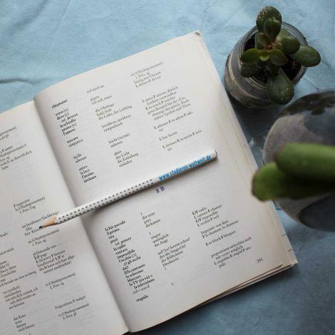 Aufgeschlagenes Buch mit Vokabluar