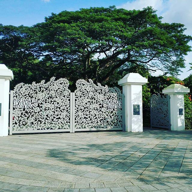 Singapore Botanic Gardens.. #sightseeing #erlebees #germaninsingapore #sgde