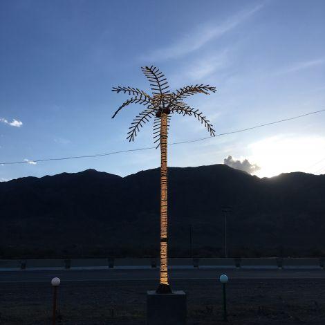 Leuchtende Palme vor Bergen