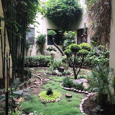 Garten in einem Innenhof meiner Arbeit