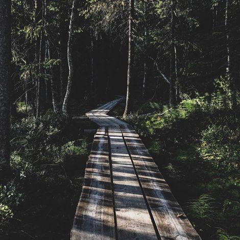 Rovaniemi ist umgeben von Natur und zahlreichen Sport- und…