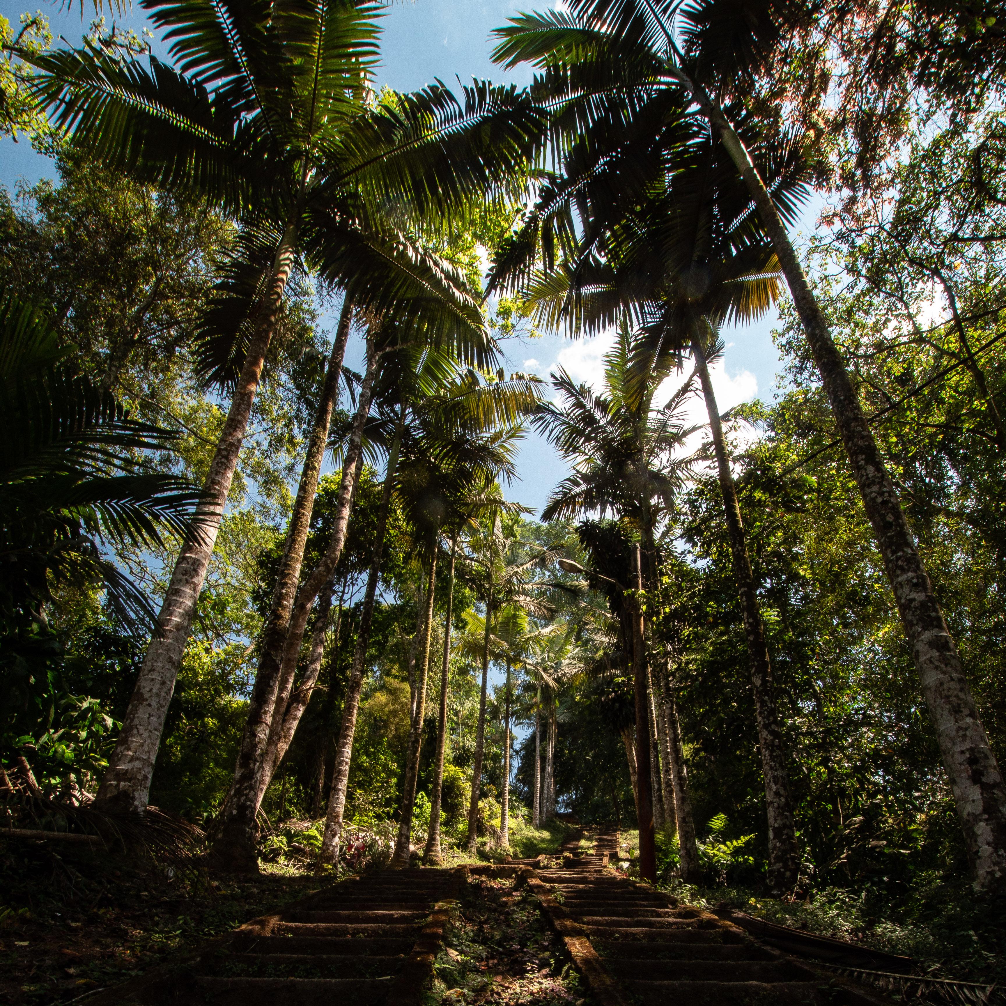 Auslandssemester auf Bali – Mehr Urlaub als Studium?