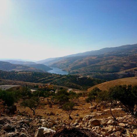 Obwohl die Badiya, die jordanische Wüste, den größten Teil der Landfläche…