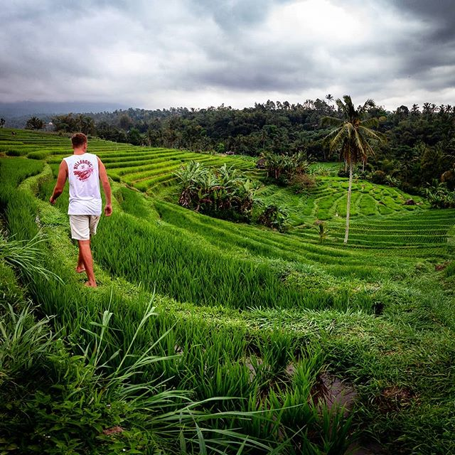 Unser Wochenende im Norden Balis war großartig. ⛰🇮🇩 Weniger Tourismus,…