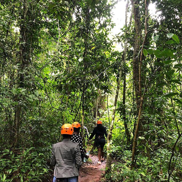#throwback zum Mabira-Forest:…