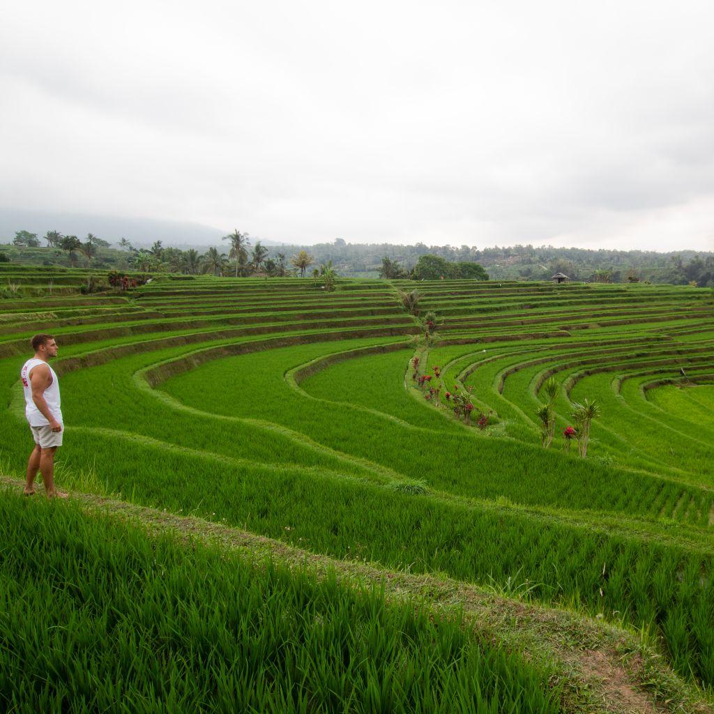Ich an den Reisfeldern von Jatiluwih