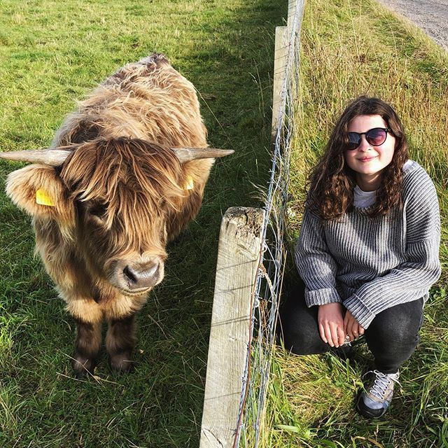 To brighten up your friday 🐮…