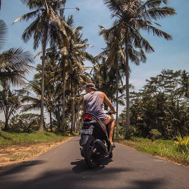 Zurück aus dem Norden 🛵 So langsam habe ich fast alle Ecken von Bali…