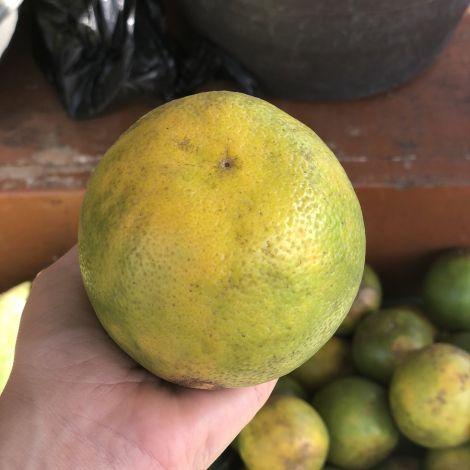Ich dachte tatsächlich, das sei eine Zitrone. Ist wohl eine Orange 🍊…