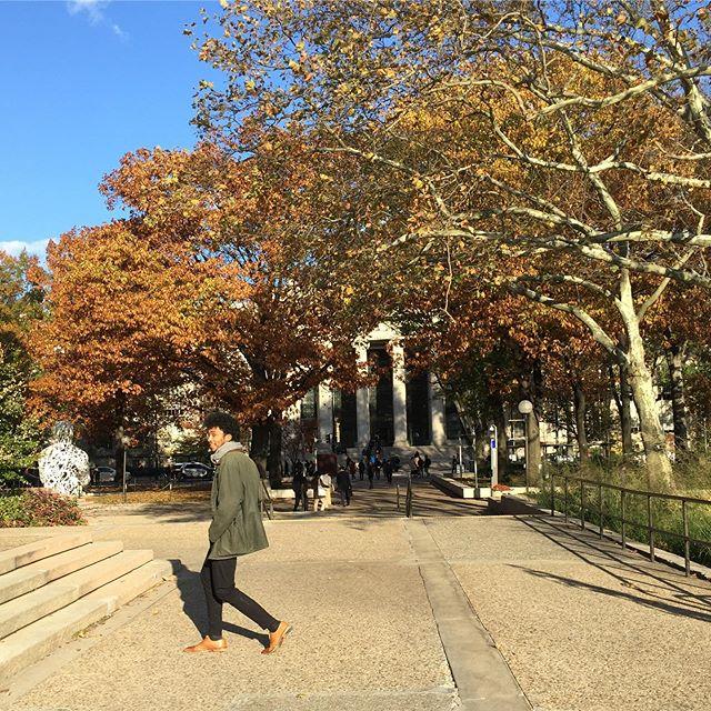 Im Media Lab des MIT #erlebees #studyabroad #mit #boston #daad…