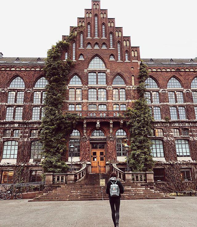Wer hier Hausarbeiten schreiben und lernen will, sollte in Lund studieren…