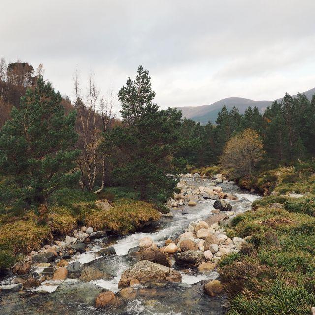 Glenmore National Park