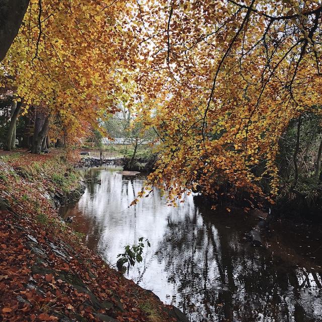 Herbstspaziergang am Fluss Ness