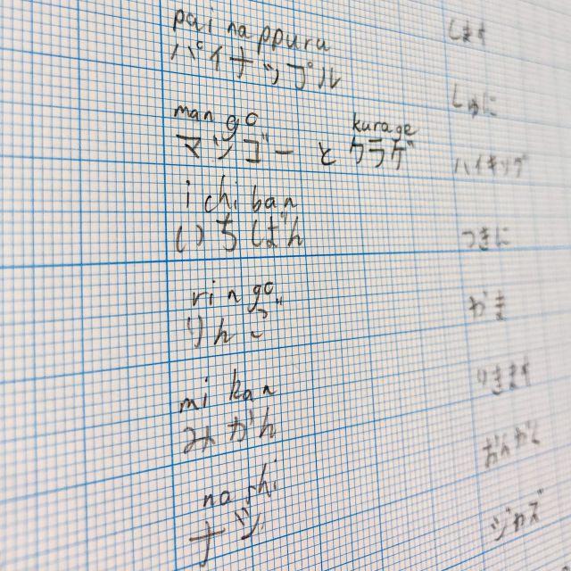 Vokabeln im japanischen Alphabet Katakana und Hiragana sowie in Romanji auf kariertem Papier geschrieben.