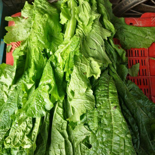 grün, Gemüse, Mustard greens, frisch, Markt