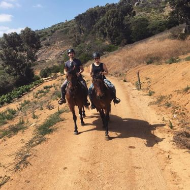 Das Glück der Erde liegt ja bekanntlich auf dem Rücken der Pferde. Schon seit…