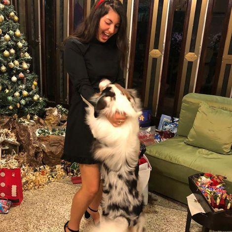 Ich habe dieses Jahr Weihnachten bei einer libanesischen Familie verbracht. Sie…