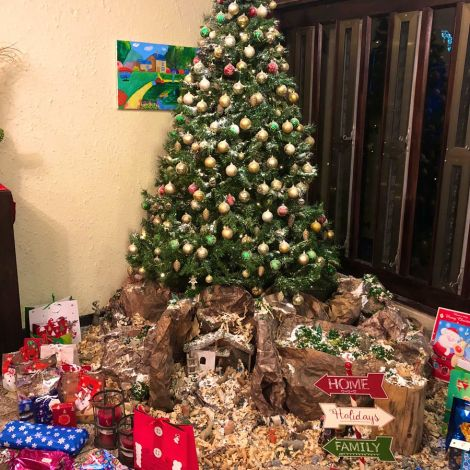 Und das war unser wunderschöner Weihnachtsbaum 🎄 #erlebees #ghana…
