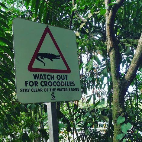 Explore nature and Johor. Zu Weihnachten kann man Mal bei 30 Grad die Natur…