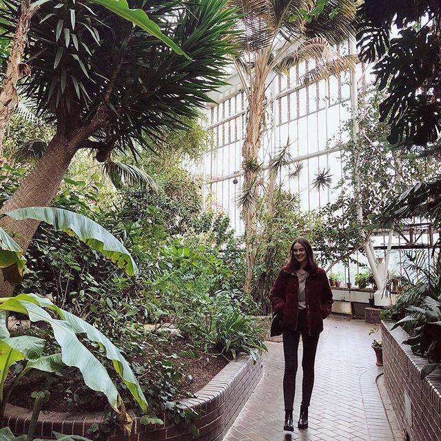 Im Pflanzenparadies 🌴🌵🌿 Ein Dschungel mitten in London ☺️…
