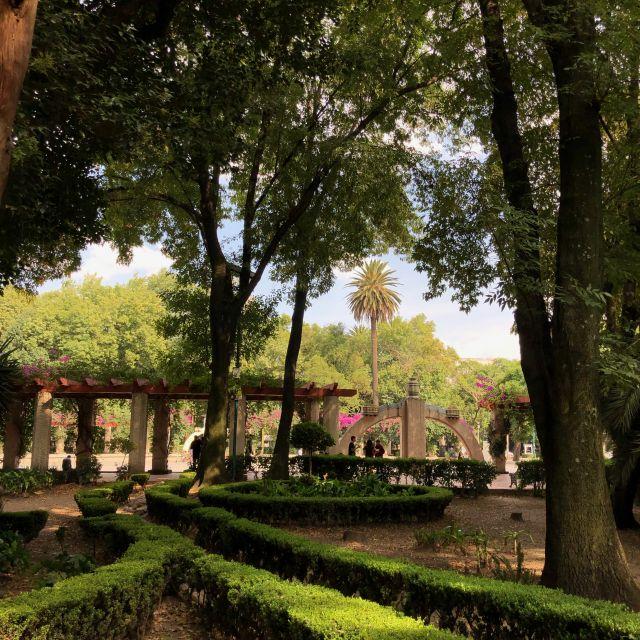 Grünflächen im Parque España (La Condesa)