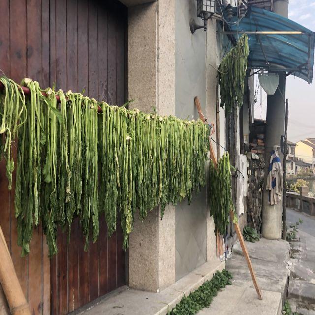 China Gemüse wird getrocknet
