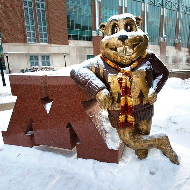 Die University of Minnesota ist mit über 60.000 Studierenden die drittgrößte…