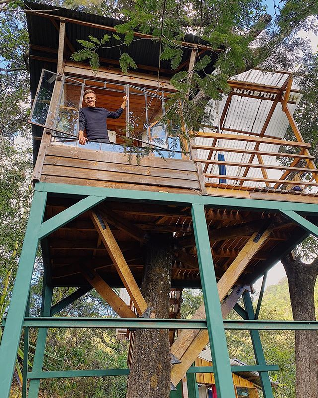 You're never too old for a #treehouse 😜 #erlebees