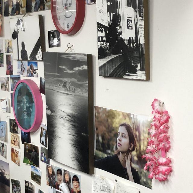 Viele verschieden große und bunte Fotos hängen an einer weißen Wand.
