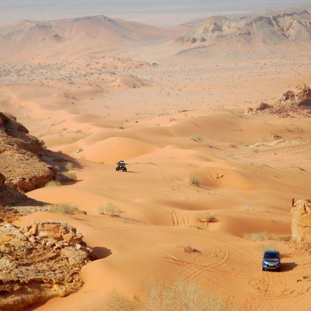 Wüste Araba, Natur, Jordanien