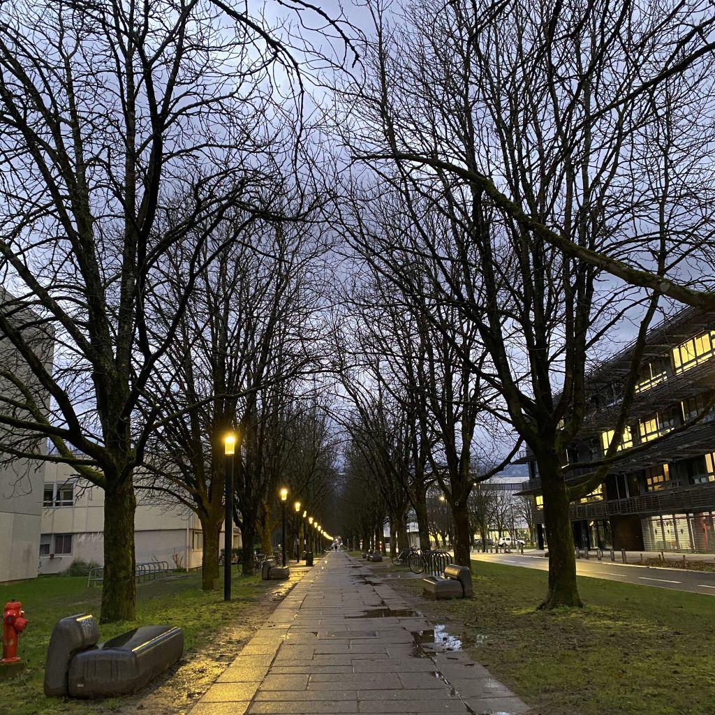 Man sieht den regnerischen Campus.