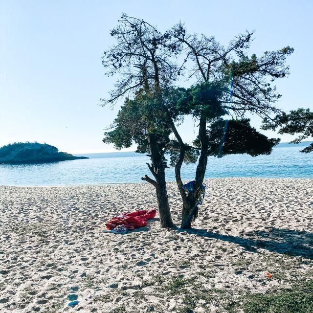 Schlafsack unter Baum am Strand.