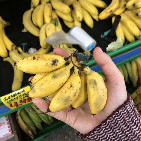 Hier ein paar Zwergbananen. Auf Portugiesisch übrigens Banana maçã 🍌🍎…
