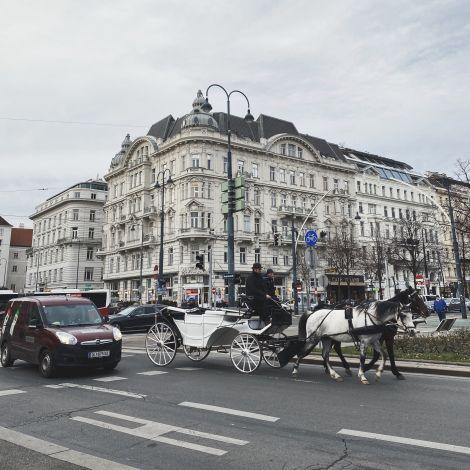 Fiaker (Pferdekutsche) in Wien
