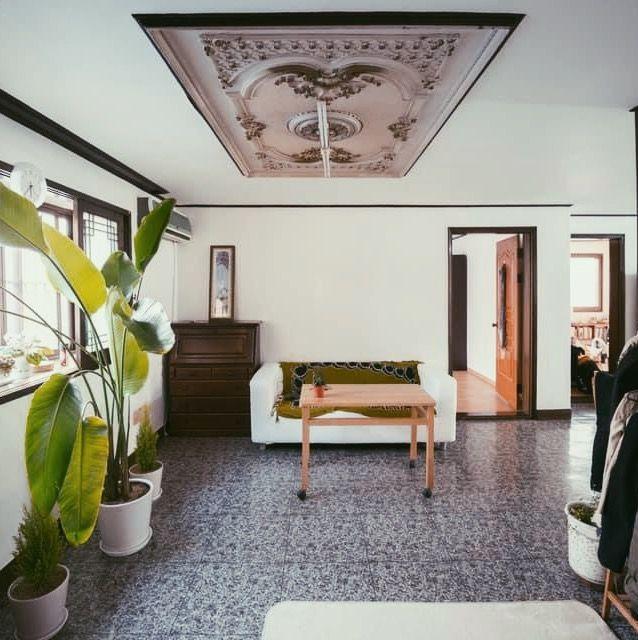 Wohnzimmer mit Sofa, Tisch und großer Pflanze