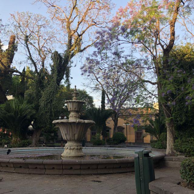 Springbrunnen in einem Park