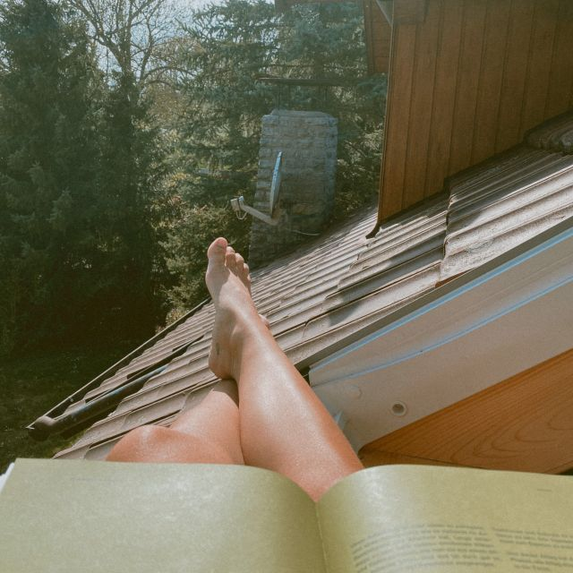 Buch, Beine und Dach.