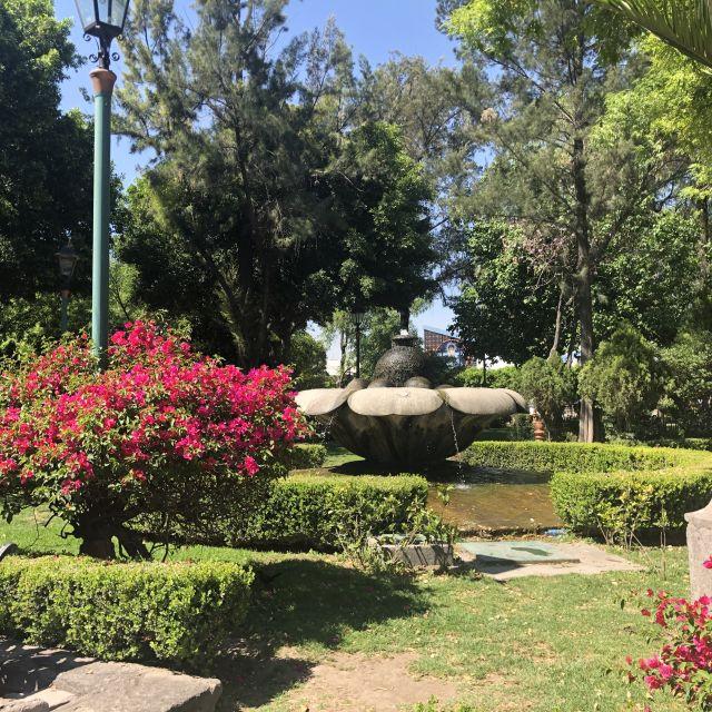 Ein Park mit Springbrunnen und blühenden Pflanzen